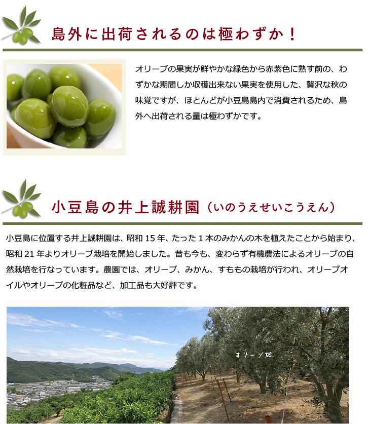 小豆島特産 新漬けオリーブ